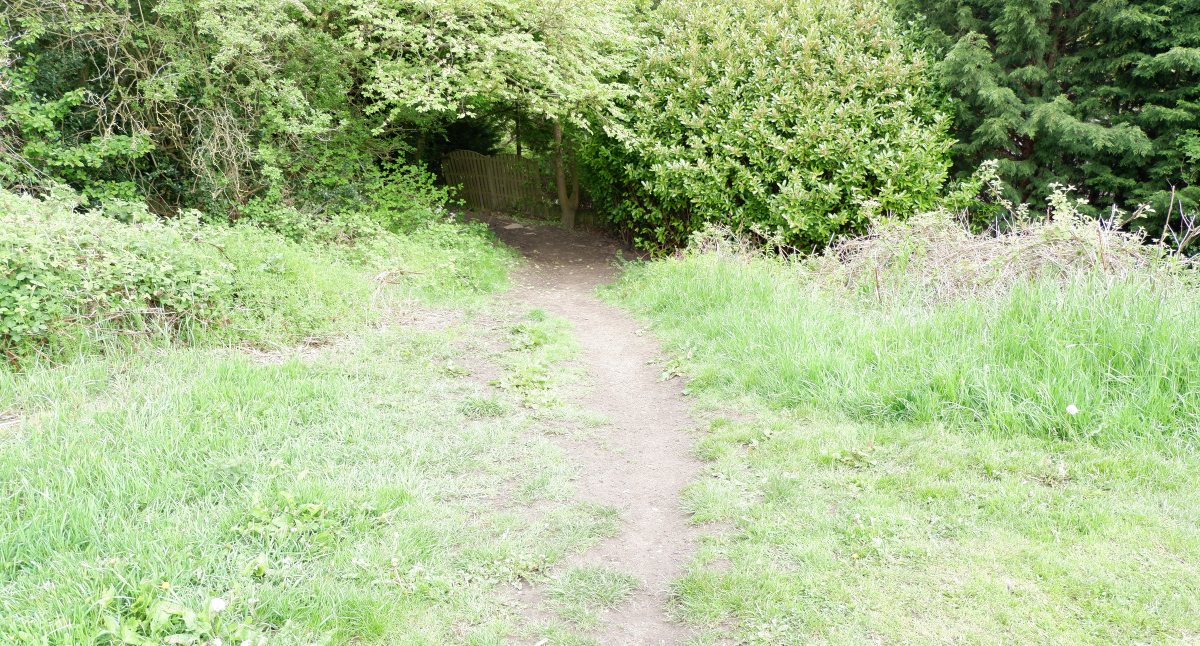 Slope to Billy Woods