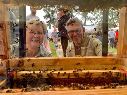 See the Bees at Norwood Green Summer Fete 2020