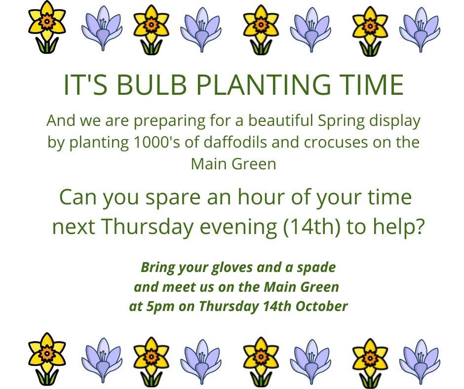 Bulb Planting on the Main Greens